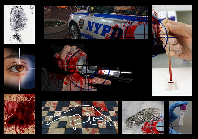 nypd-849658_640